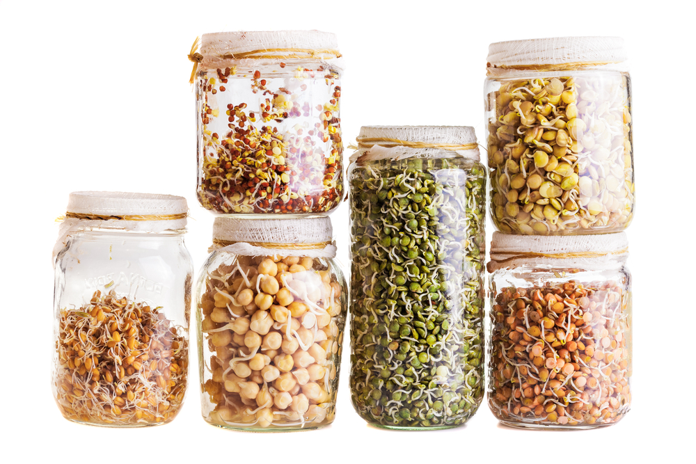 Soaking and sprouting pulses