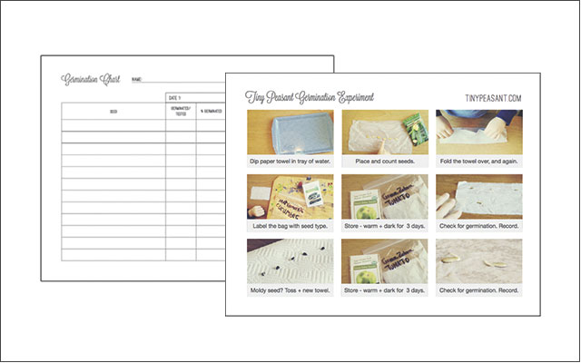 germinating seeds with kids - printable charts