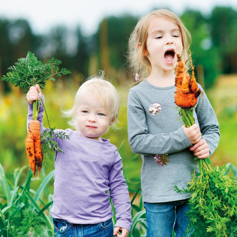 two small kids with carrots just pulled out of the garden