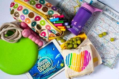 assortment of items to take on a road trip with kids